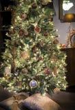 圣诞节豪华结构树 库存图片