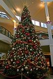 圣诞节购物中心结构树 免版税库存照片