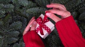 圣诞节赠礼 股票视频