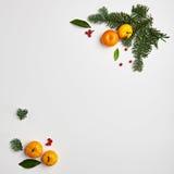 圣诞节边界框架 库存照片