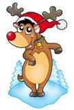 圣诞节逗人喜爱的驯鹿 库存图片