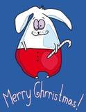圣诞节野兔 库存图片