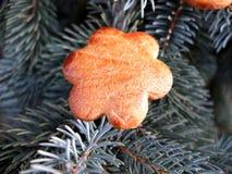 圣诞节金蜜糕花 库存照片