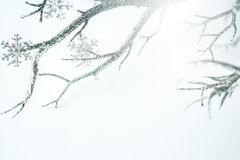 圣诞节银色分支和金属雪花 库存照片