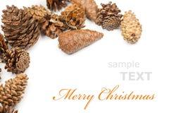 圣诞节锥体框架 免版税库存照片