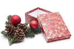圣诞节锥体珠宝杉木 免版税库存照片