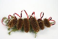 圣诞节锥体 免版税库存图片
