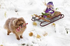 圣诞节问候,图象的欢乐背景 3d翻译 免版税库存照片