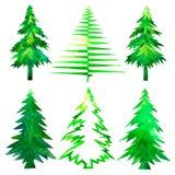 圣诞节集合结构树 圣诞节时间绿色手画树的水彩 图库摄影