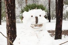 圣诞节雪人在公园 库存照片