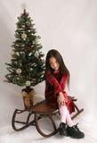 圣诞节雪撬 库存照片