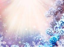 圣诞节雪背景 免版税图库摄影