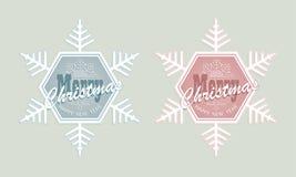 圣诞节雪花,集合 免版税库存照片