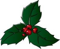 圣诞节霍莉小树枝 库存照片