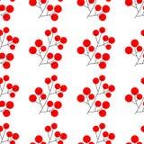 圣诞节霍莉欢乐设计的莓果元素分支被隔绝的 也corel凹道例证向量 无缝的模式 向量例证