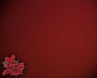 圣诞节霍莉背景 免版税库存照片