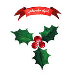 圣诞节霍莉莓果 库存照片