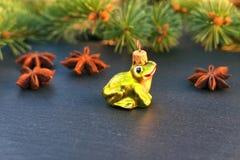 圣诞节青蛙装饰品 库存照片