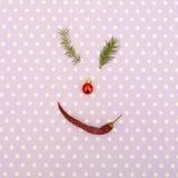 圣诞节面孔由杉木分支、红色玩具和辣椒制成 最小的圣诞节概念 库存图片
