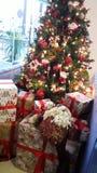 圣诞节颂歌房子和商店的创造性的装饰 免版税图库摄影