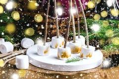 圣诞节食物概念敬酒了在棍子的Marshmellow在木盘子木背景锥体柳条野餐篮子毯子冷杉branc 库存图片