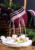 圣诞节食物概念敬酒了在棍子的Marshmellow在木盘子木背景锥体柳条野餐篮子毯子冷杉branc 库存照片