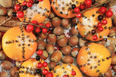 圣诞节香料和坚果 库存图片