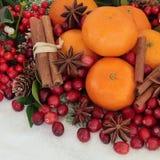 圣诞节香料和果子 免版税库存图片