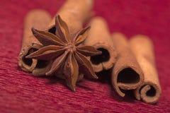 圣诞节香料桂香和茴香 免版税库存照片