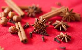 圣诞节香料的差异 免版税库存图片