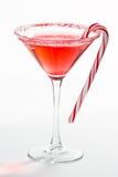 圣诞节马蒂尼鸡尾酒 库存照片