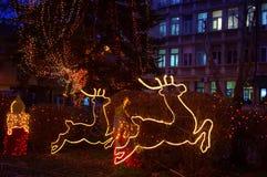 圣诞节驯鹿在城市 免版税库存图片