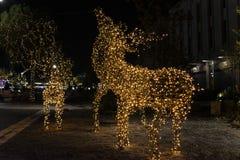 圣诞节驯鹿装饰 免版税库存照片