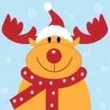 圣诞节驯鹿 库存图片