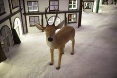 圣诞节驯鹿 图库摄影