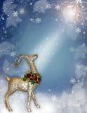 圣诞节魔术驯鹿 免版税库存照片