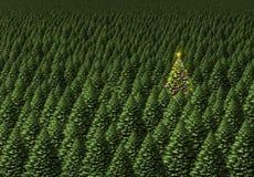 圣诞节魔术结构树 免版税库存照片