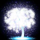 圣诞节魔术结构树 库存图片