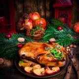 圣诞节鸭子 免版税库存照片