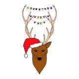 圣诞节鹿的手拉的例证 免版税库存照片