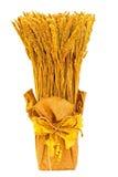 圣诞节麦子 免版税图库摄影