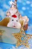 圣诞节,在为时 免版税库存照片