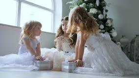 圣诞节,有礼物的小女朋友看彼此在大窗口和新年树附近户内 股票视频