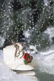 圣诞节滑冰2 免版税库存图片