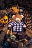 圣诞节以后的玩具熊绿色针叶树锥体 免版税库存图片