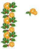 圣诞节水彩例证 与霍莉分支和桔子的贺卡 免版税库存图片