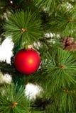 圣诞节结构树装饰 2016个新年 库存照片