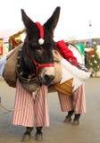 圣诞节驴 免版税库存图片