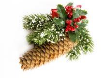 圣诞节pinecone 库存图片