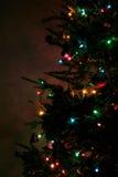 圣诞节sideview结构树 免版税库存照片